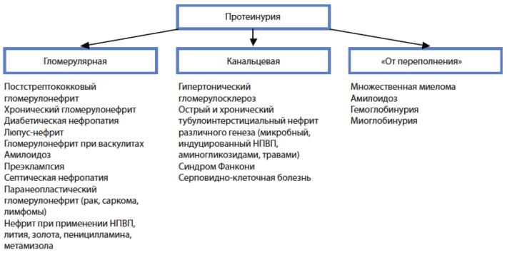 Основные причины патологической протеинурии