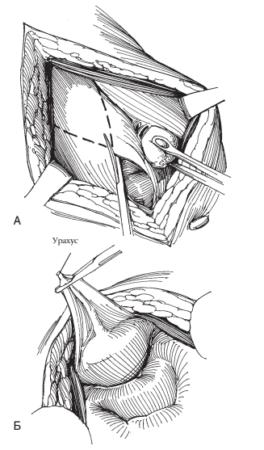 Иллюстрация 12