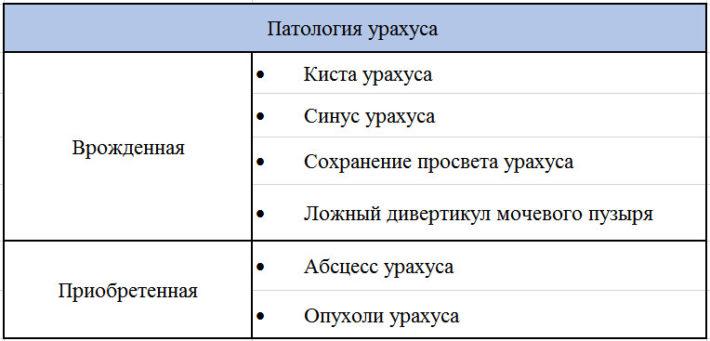 Классификация патологии урахуса