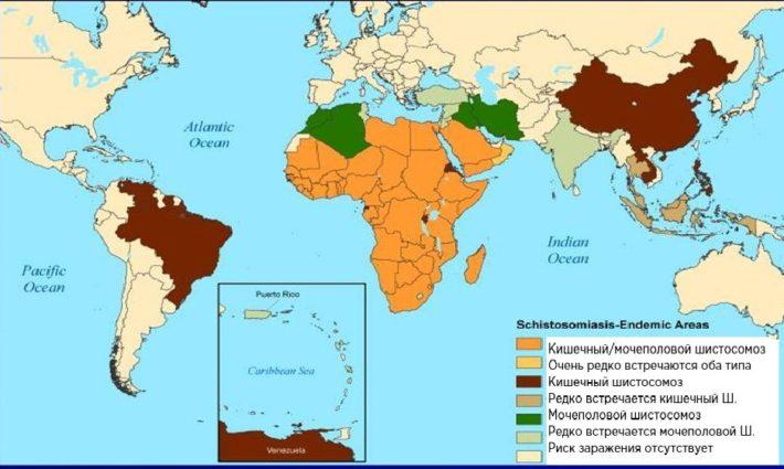 география шистосомозов