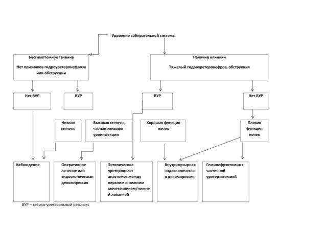 Алгоритм подбора варианта лечения у пациента с уретероцеле